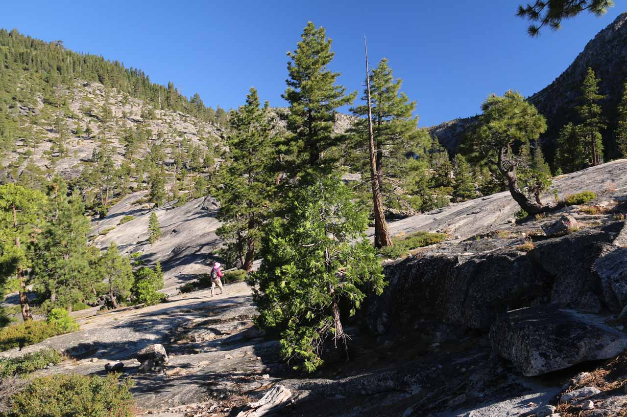After the Cascade Vista, we had lost the trail in this granite section and we found ourselves route finding and scrambling our way uphill until we'd eventually regain the trail