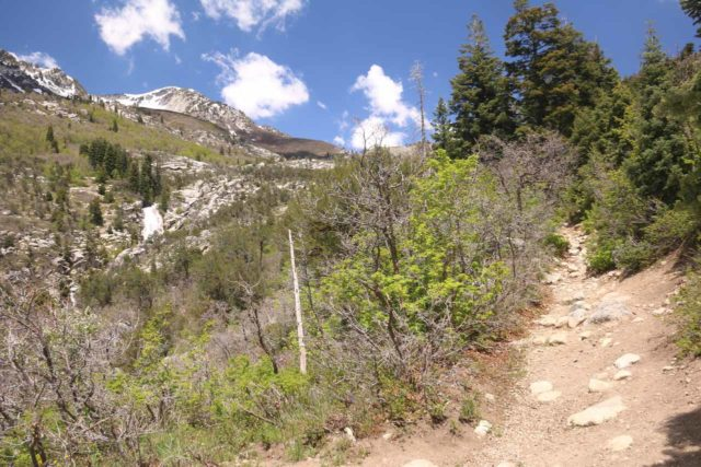 Horsetail_Falls_Alpine_073_05272017 - Following the narrower trail with Horsetail Falls along with Pfeifferhorn and White Baldy mountains always in view