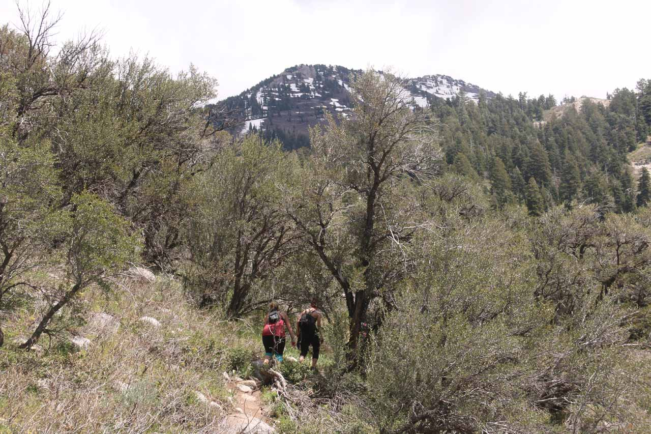 After having my fill of Horsetail Falls, I followed these hikers out this other trail, which was how I found out about the eroded game trail that I had missed earlier