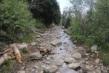 Horsetail_Falls_Alpine_154_05272017 - Looking back at a section of the trail where there was some running water on it requiring some rock hopping to stay dry