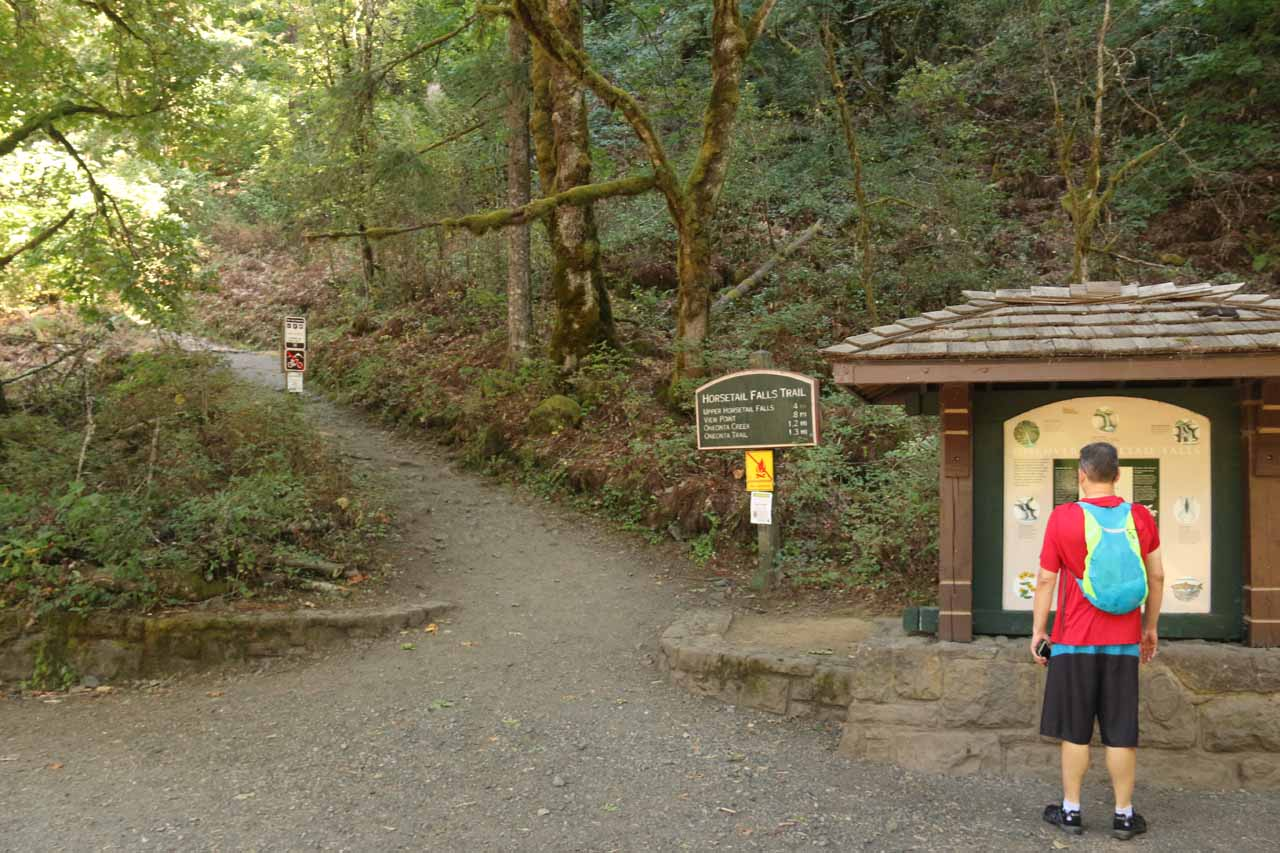 One guy studies the sign before the trailhead leading up to Ponytail Falls and eventually the Oneonta Gorge