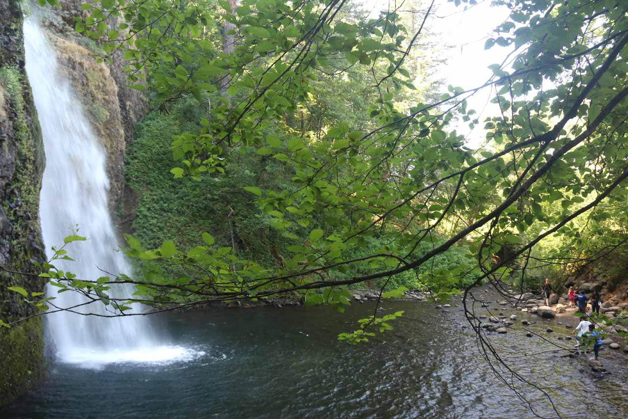 From the picnic area, this was the view towards the bottom of Horsetail Falls. At this angle, I could better understand how the waterfall got its name