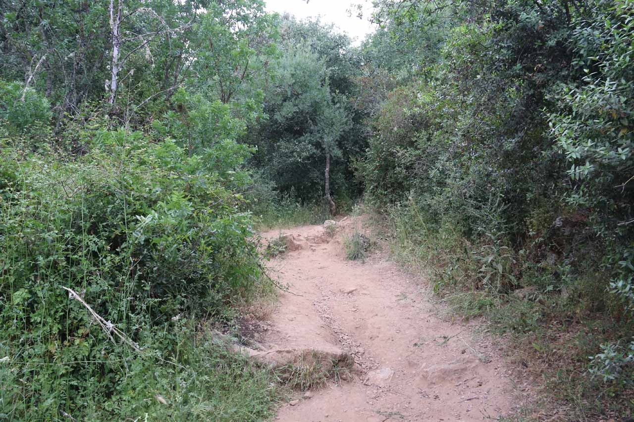 I believe this was a spur path that led me towards the fourth waterfall that I encountered at Cascadas de Huesna