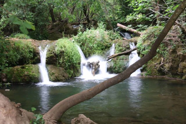 Huesna_049_05242015 - The last of the Cascadas de Huesna that I encountered on the hike