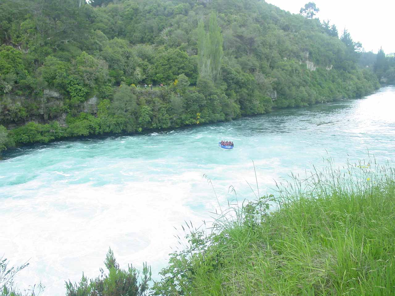 Looking downstream from Huka Falls towards a jet boat tour that started to enter the extensive whitewater caused by the waterfall