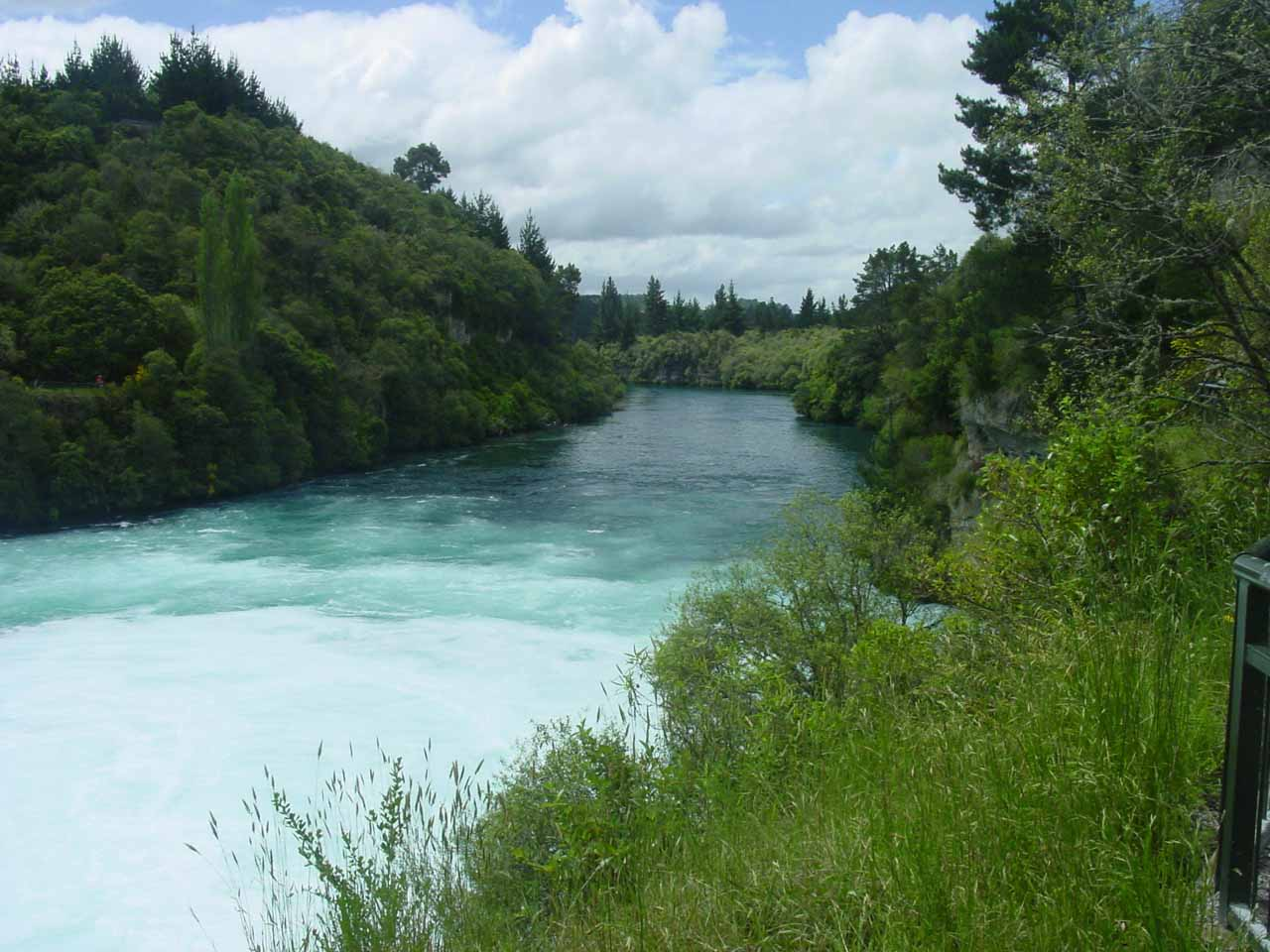 Looking downstream along the Waikato River