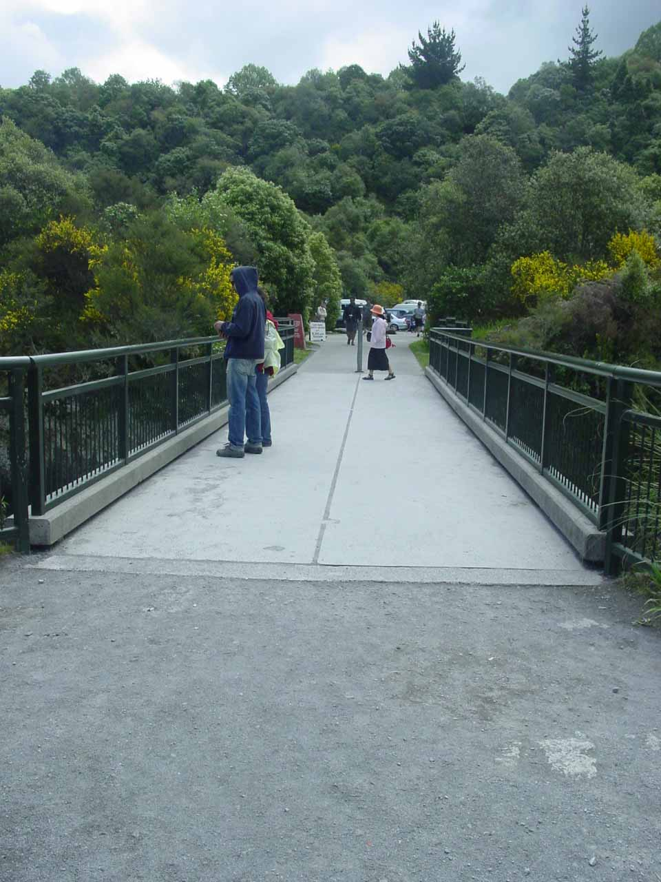 Looking back towards the bridge over the Waikato River and towards the car park