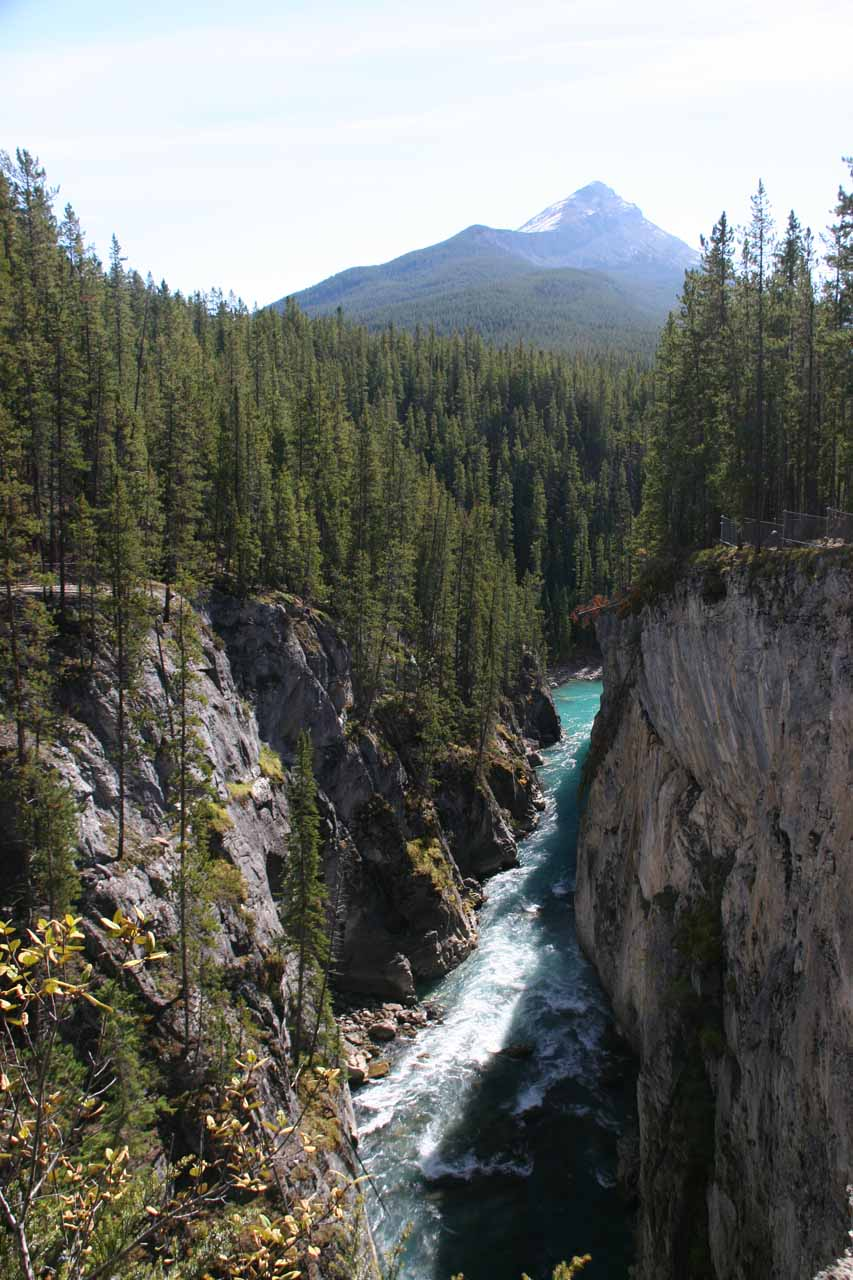 Looking along the steep gorge carved out by the Sunwapta River towards a mountain peak in the distance
