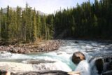 Icefields_Parkway_092_09182010 - Looking upstream from the lookout at the brink of Sunwapta Falls