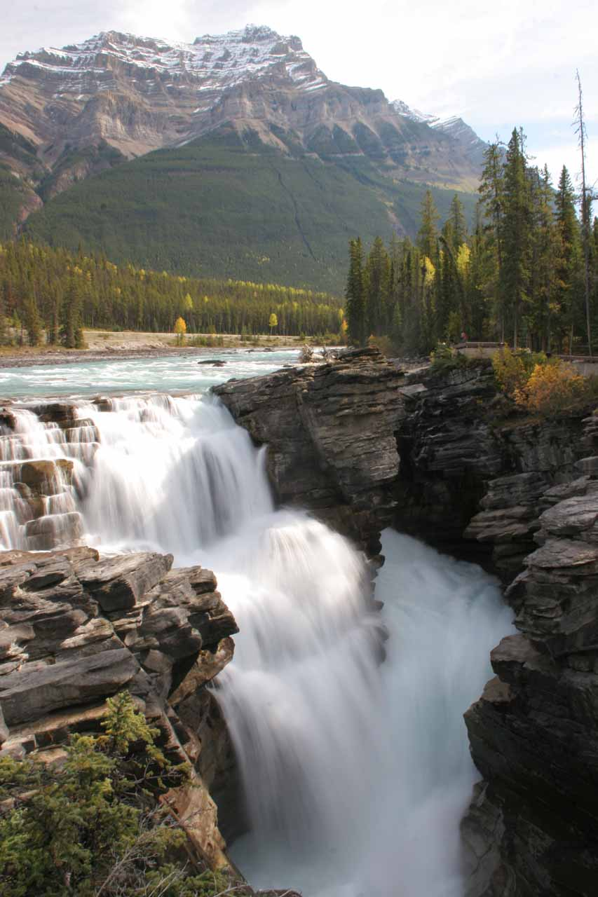Peering into the turbulence of Athabasca Falls from one of the first overlooks we encountered