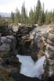 Icefields_Parkway_152_09182010