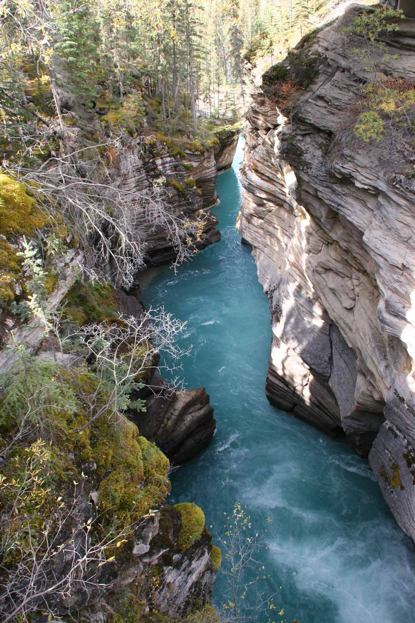 Peering into the Lower Canyon where the water started to get calm and exhibit its glacially-influenced colors