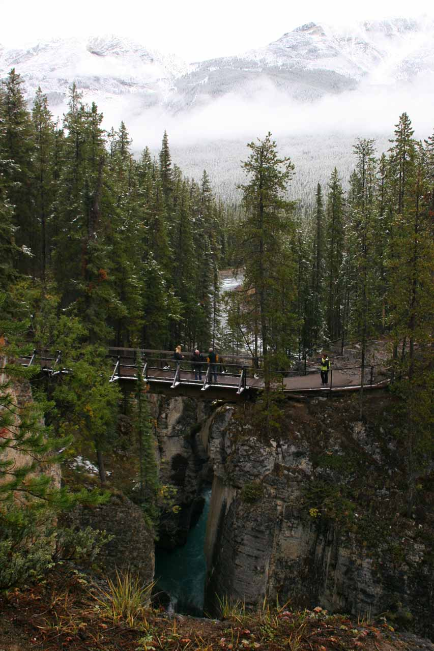 Looking back at a bridge spanning a narrow gorge while walking to Lower Sunwapta Falls