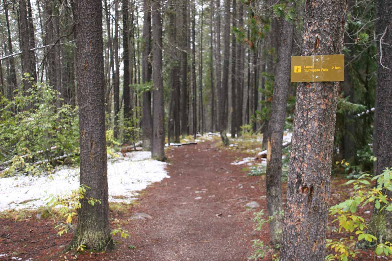 Sign by the trail leading to the Lower Sunwapta Falls