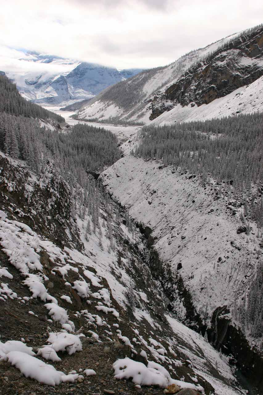 Looking along a creek near Tangle Falls as we approached the Columbia Icefields area after leaving Tangle Falls