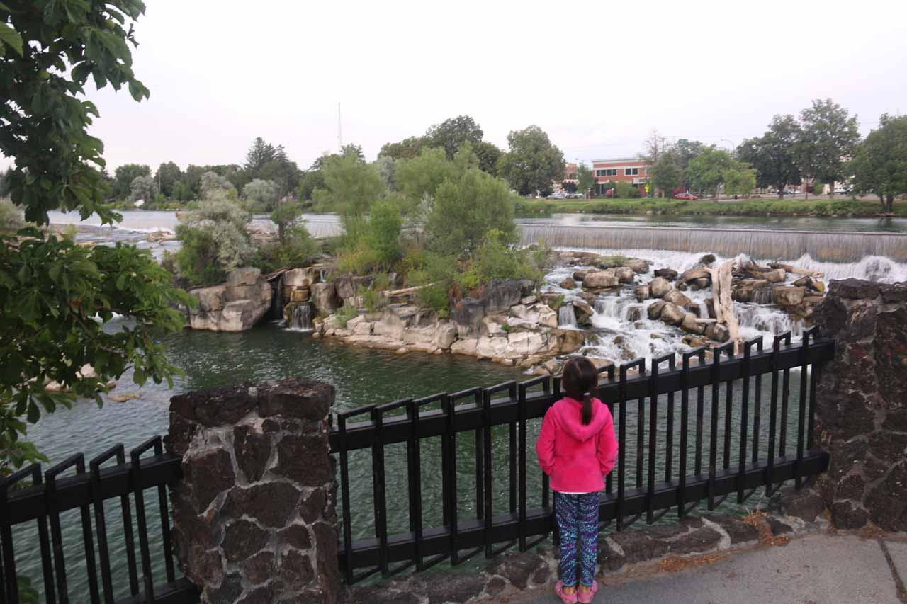 Tahia checking out the Idaho Falls
