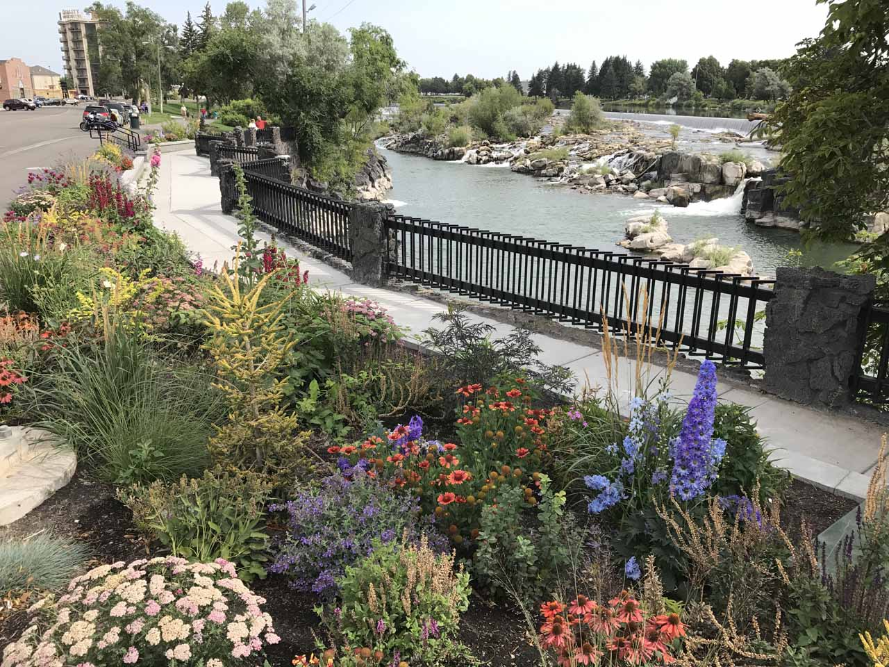 Context of some flowers fronting the viewing area for Idaho Falls