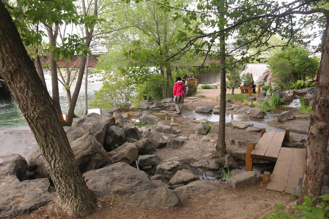 Julie taking a stroll through the Japanese Garden in Friendship Park