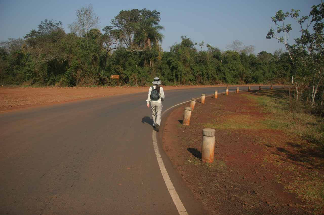 Walking along the road towards Sendero Macuco