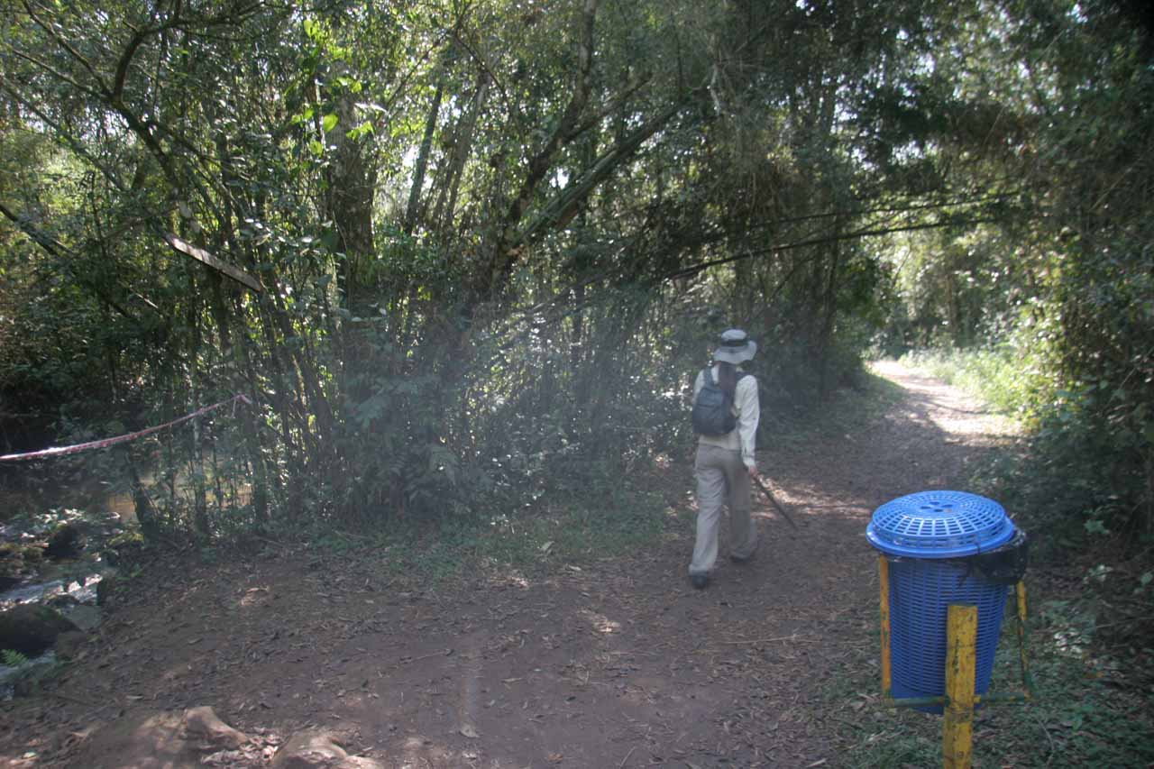 Julie passing by a rubbish bin by the trail
