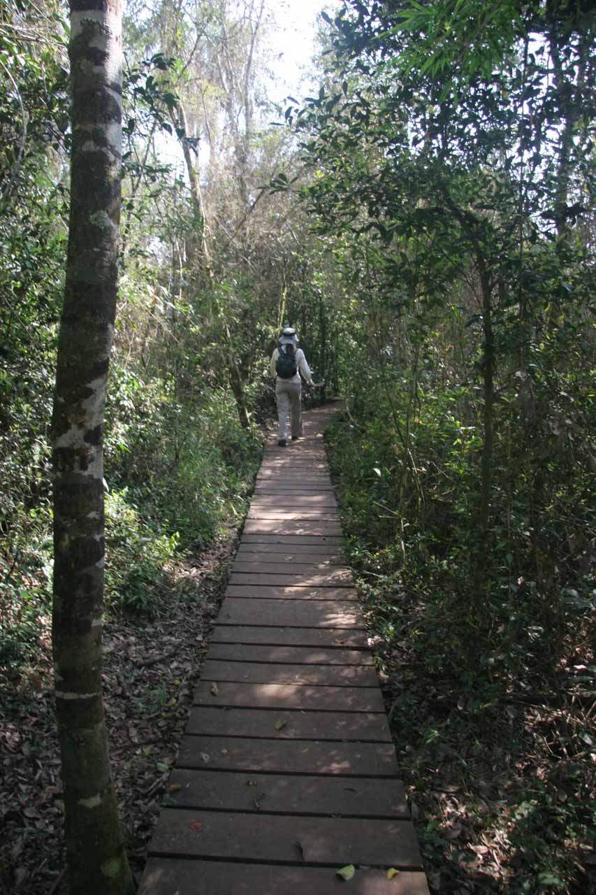 I believe the boardwalks were there to keep walkers from having to deal with the muddiest sections