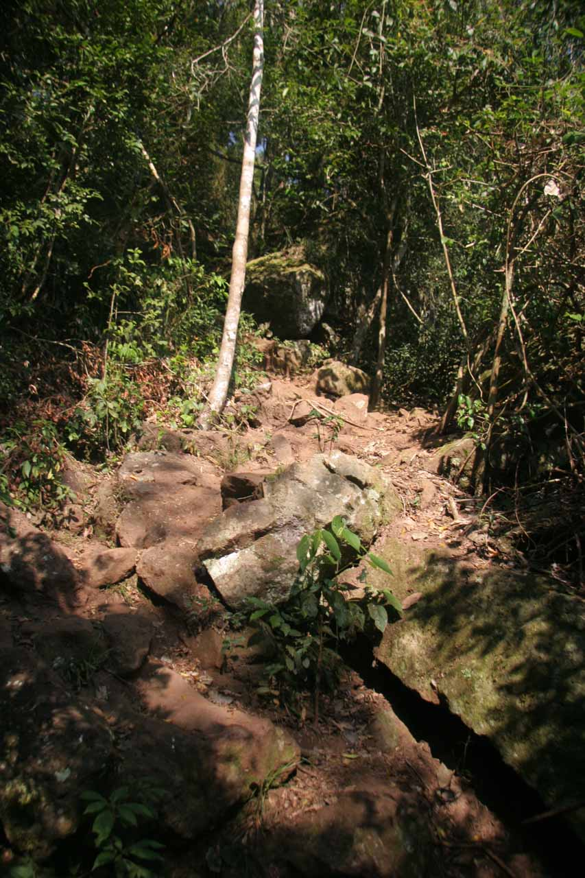 Steep and potentially slippery path to the base of Salto Arrechea