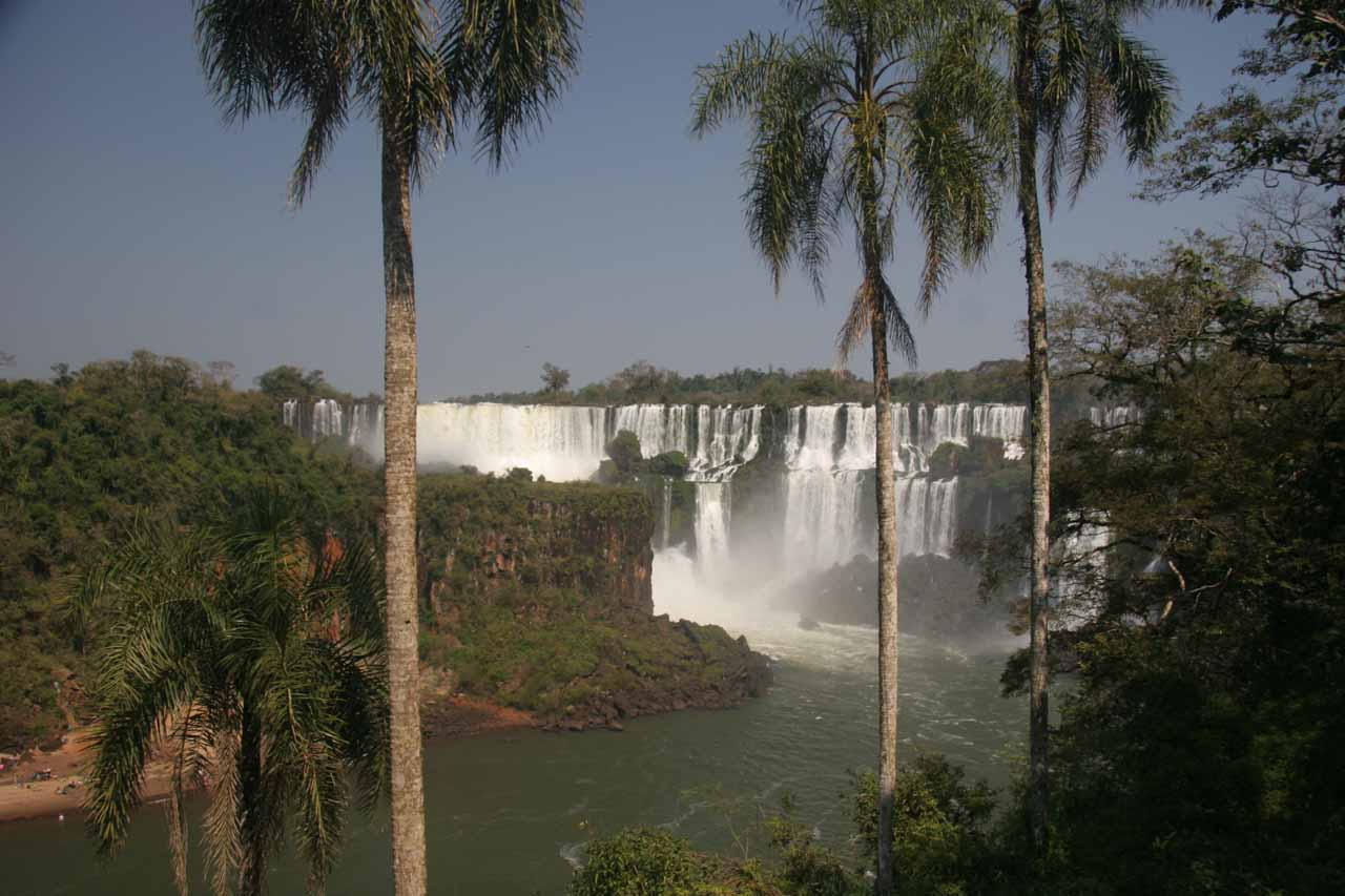 The famous view of Iguazu Falls framed by palm trees