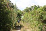 Ile_des_Pins_205_11272015 - Julie following the familiar poison oak park of the trail to Piscine Naturelle