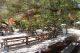 Ile_des_Pins_438_11272015 - Looking across the picnic tables at Kougny as we were awaiting our lunch