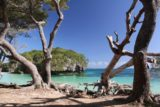 Ile_des_Pins_629_11272015 - Looking past some trees towards Kanumera Rock and the colorful lagoon by it