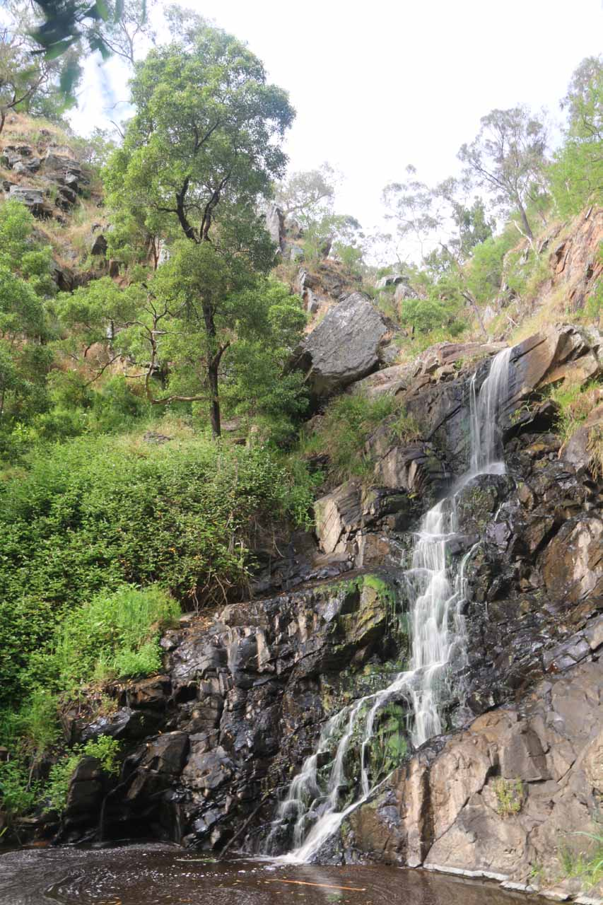 Contextual view of Ingalalla Falls from the other side of Waterfall Creek