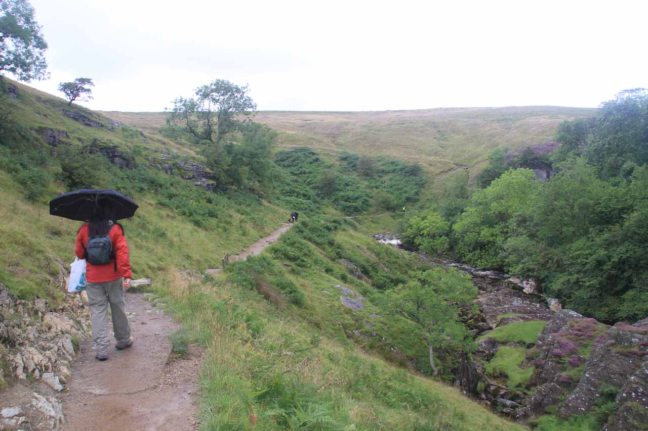 Julie walking in the rain as we had lost the tree cover on the way to Thornton Force