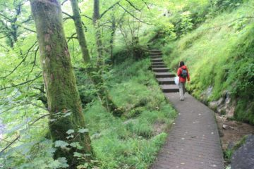 Ingleton_Waterfalls_Trail_198_08172014