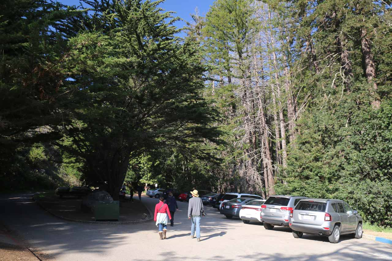 At the car park for Julia Pfeiffer Burns State Park