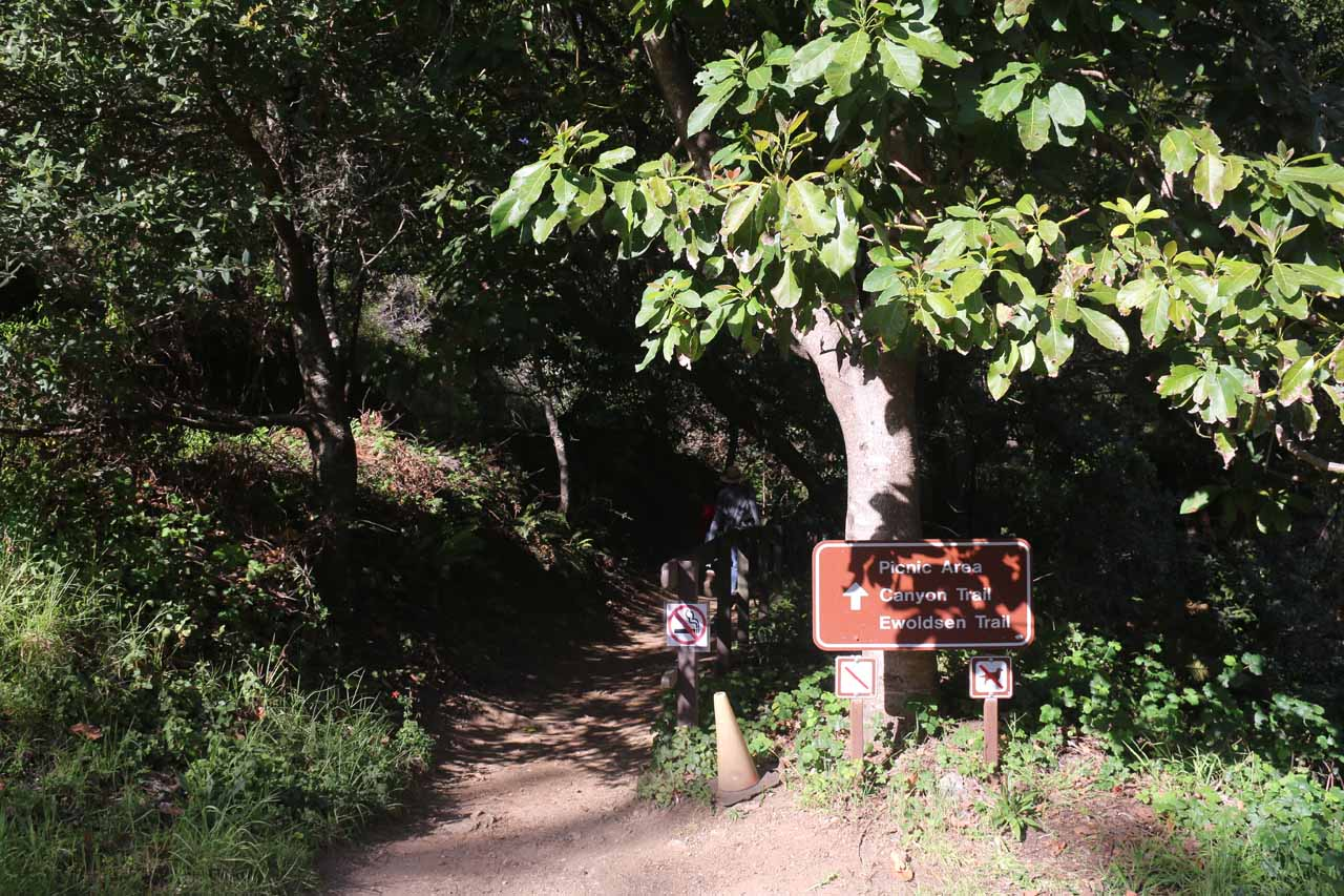 Walking past the sign marking the official start of the Canyon Trail
