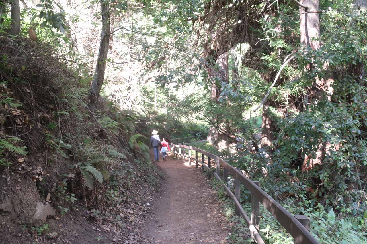The Canyon Trail was wide and well-developed at the beginning of the hike