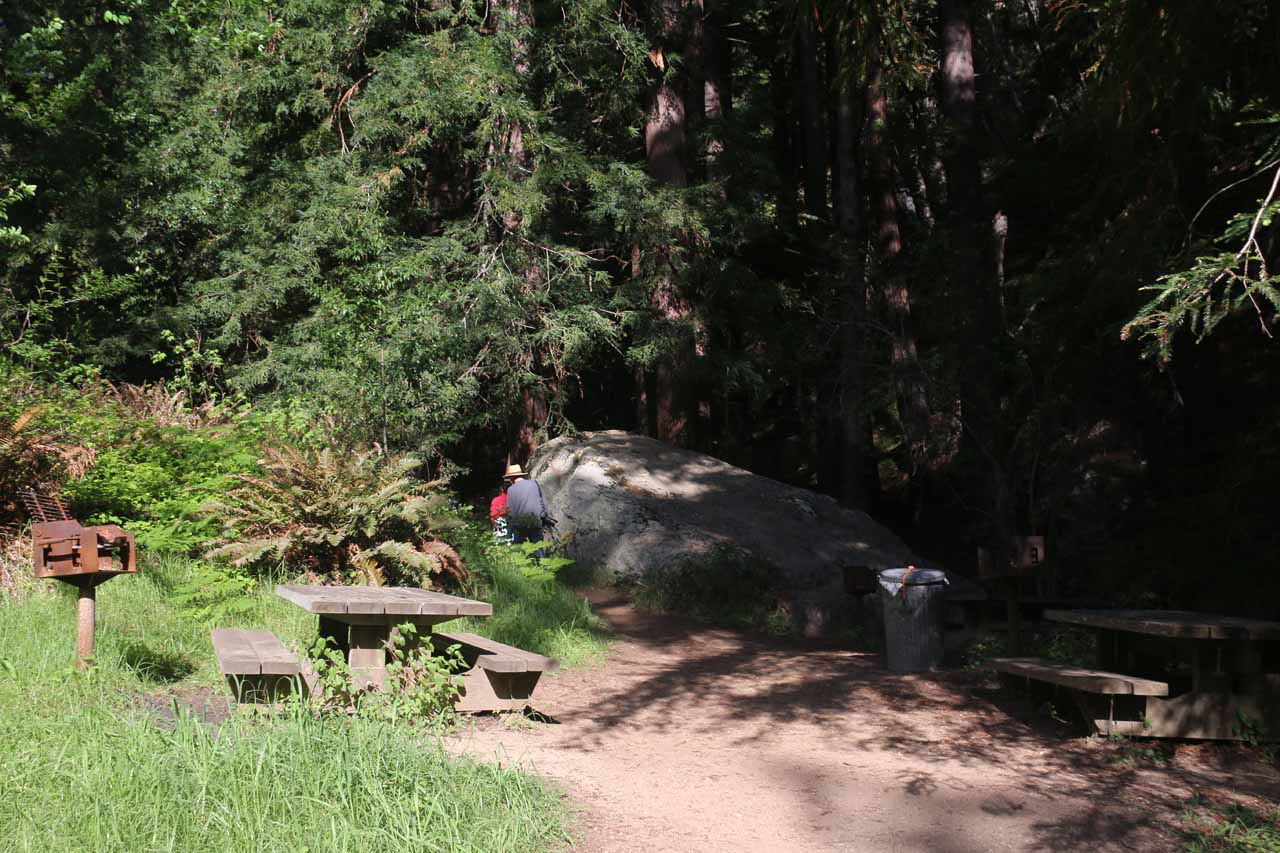 Passing through a small picnic area on the way to Canyon Falls