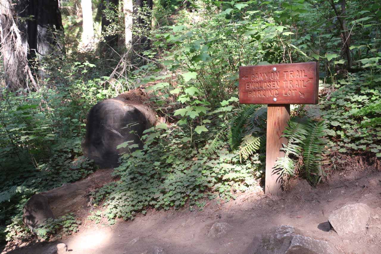 I knew that I had regained the Canyon Trail once I saw this sign