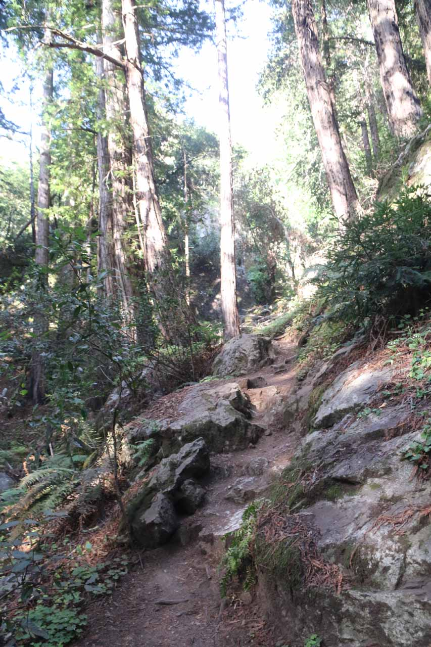 Continuing on the Canyon Trail after the unbridged creek crossing