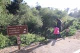 JP_Burns_SP_049_04022015 - Julie and Tahia embarking on the short trail leading down to both the Pelton Wheel and McWay Falls during our April 2015 visit