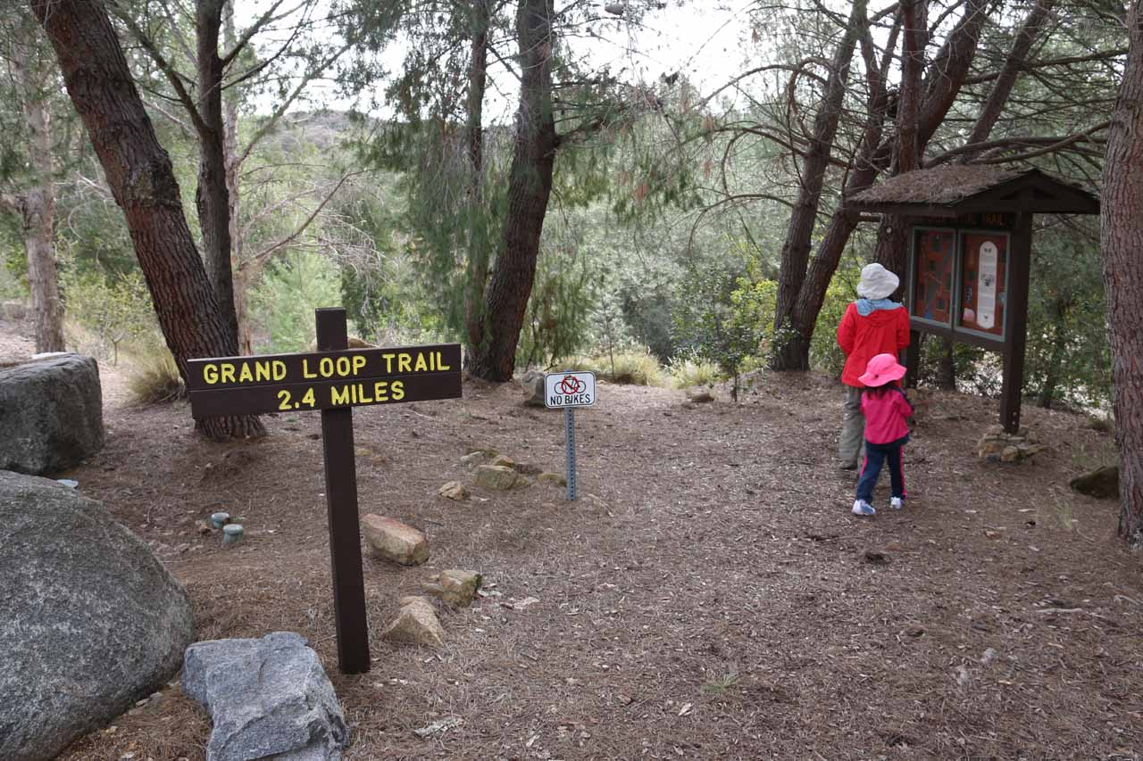 This was the signage that led us onto the Grand Loop Trail as well as the way to Jack Creek Falls