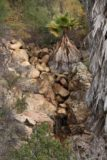 Jack_Creek_Falls_025_01102016 - Looking down at the dry Jack Creek Falls