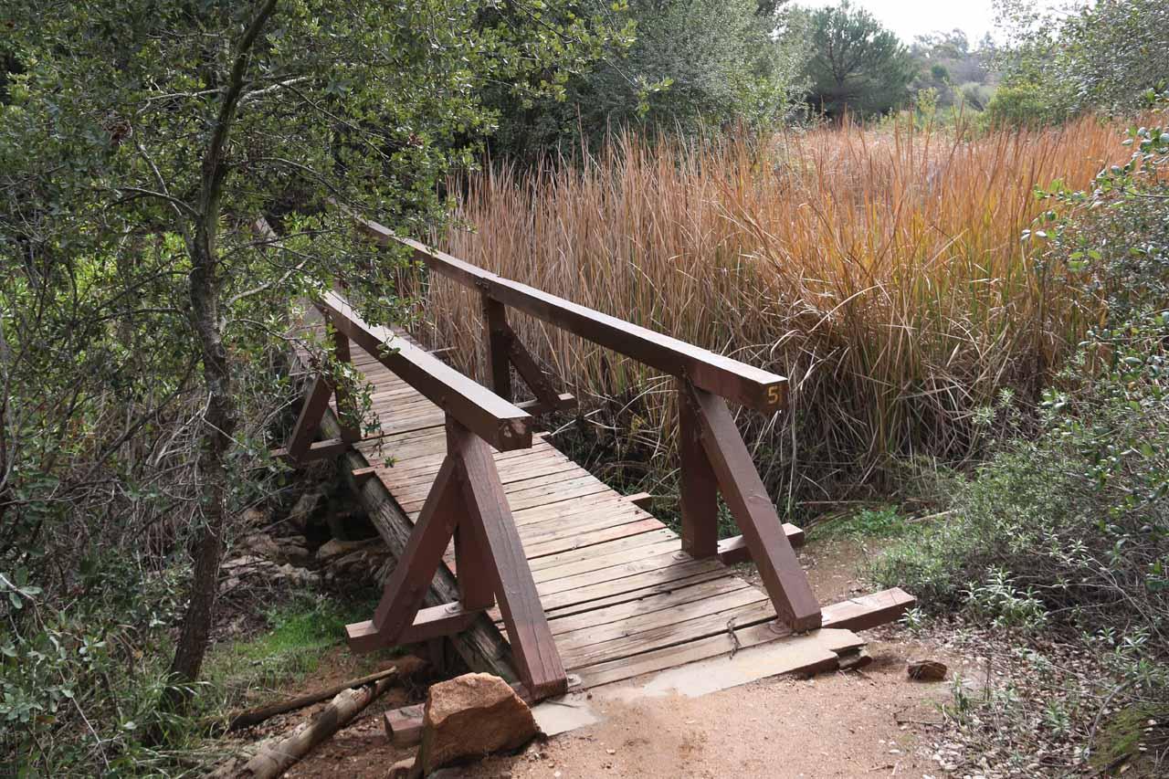 This was the footbridge traversing Jack Creek