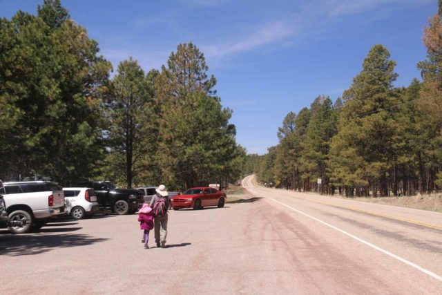 Jemez_Falls_003_04152017 - Even though the Jemez Falls Road was closed, there were still lots of cars parked along Hwy 4 right by the gate