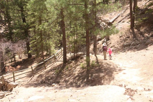 Jemez_Falls_035_04152017 - Julie and Tahia descending to a trail labyrinth. If you get this far, that means you missed the easy-to-miss spur trail to Jemez Falls