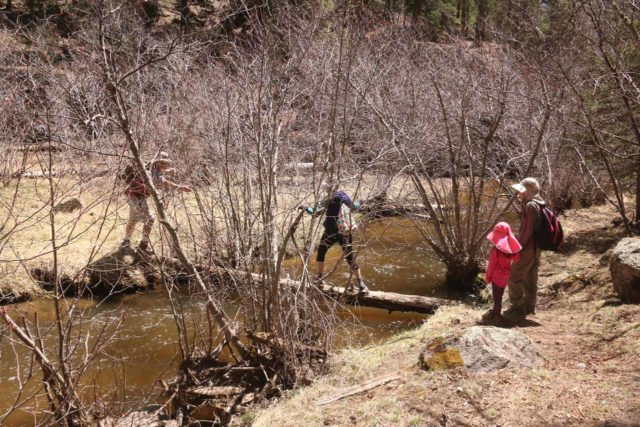 Jemez_Falls_039_04152017 - Some people have tried to get across the East Fork Jemez River in search of Jemez Falls, but little did they realize that this way would not take them there