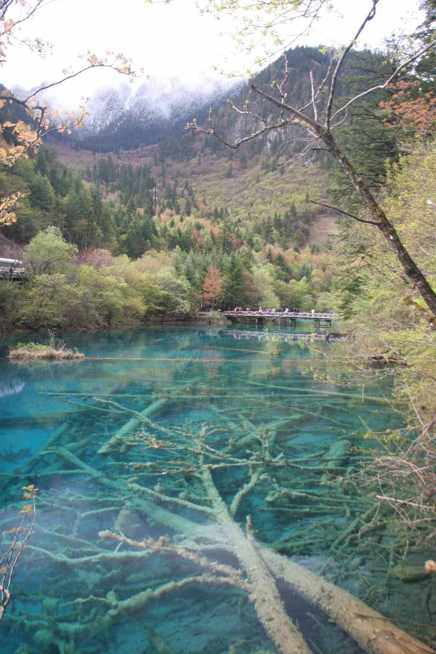 Had to throw this in there to show how beautiful the lakes in Jiuzhaigou were