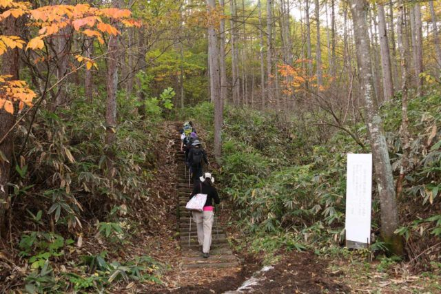 Jofu_Falls_013_10182016 - Following a group of hikers making their way towards the Jofu Waterfall from an alternate trailhead