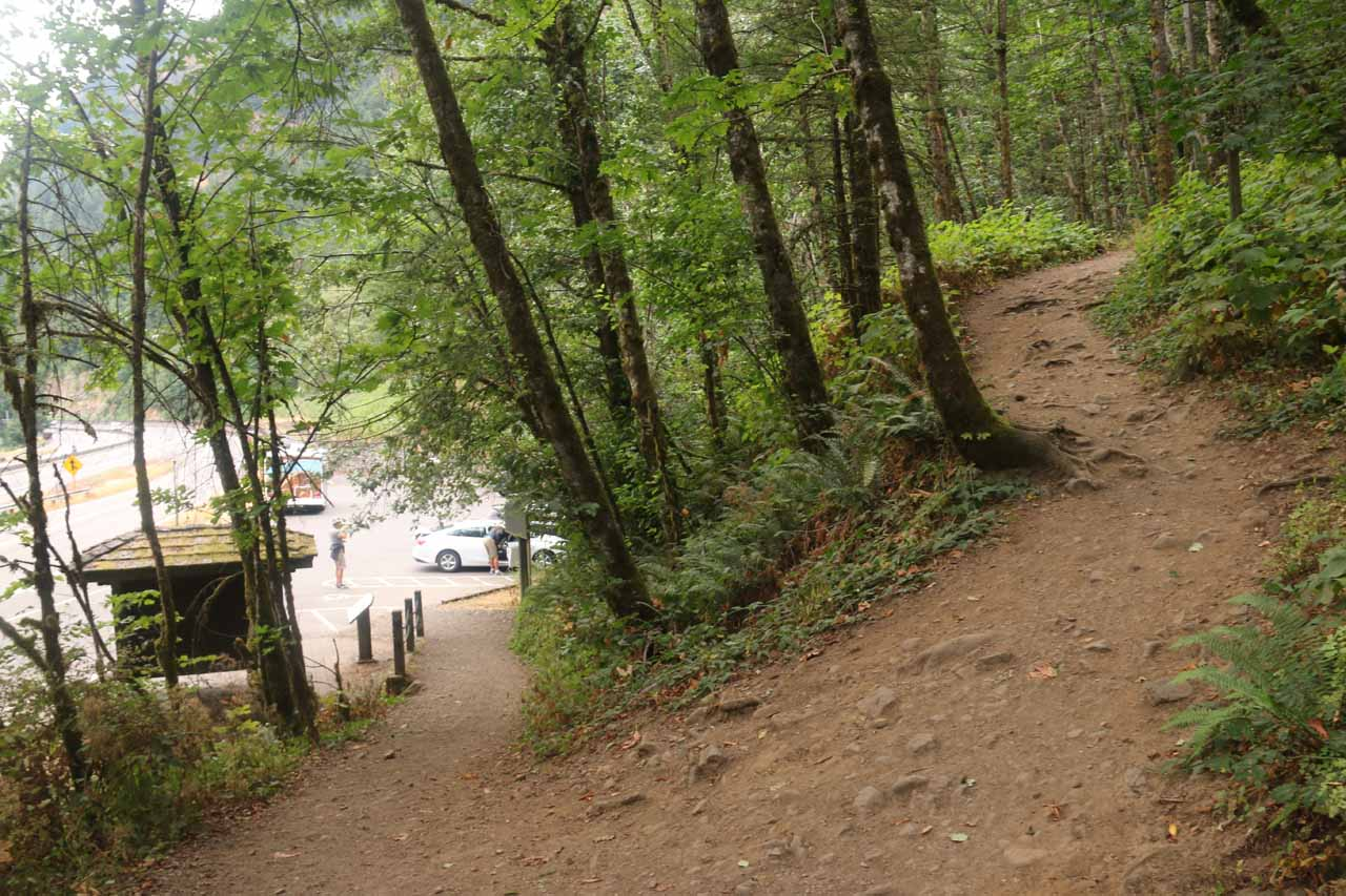 The start of the trail as it climbed above the parking lot