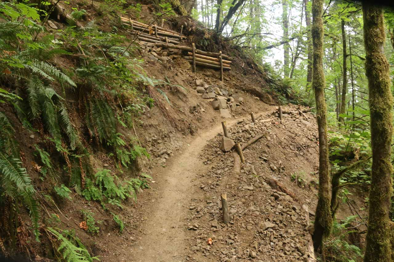 Going bcack up the eroded section of trail on the return hike